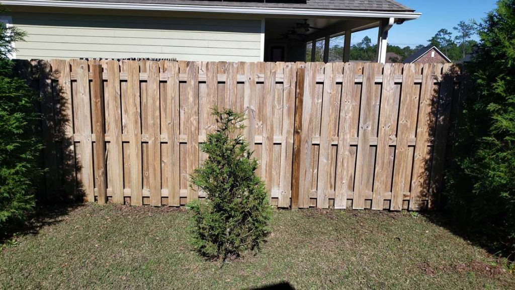Clean Fence - Pressure Washing